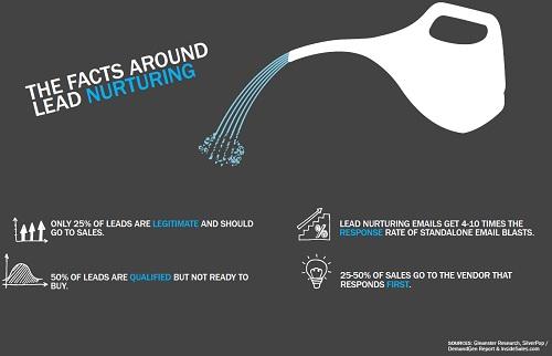 lead nurturing facts
