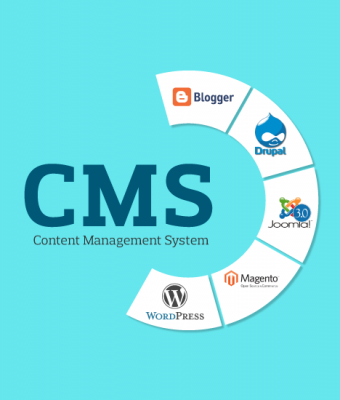 Content Management System-SEO Services