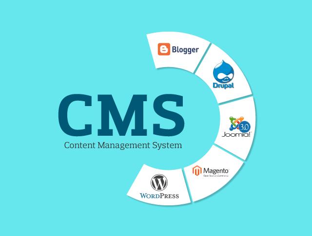 Content Management System-SEO Services